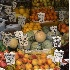 © Mary B McGrath PhotoID# 5596760: Fruit Stand