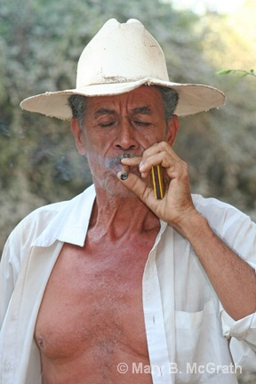 Man and His Cigar - ID: 13066842 © Mary B McGrath